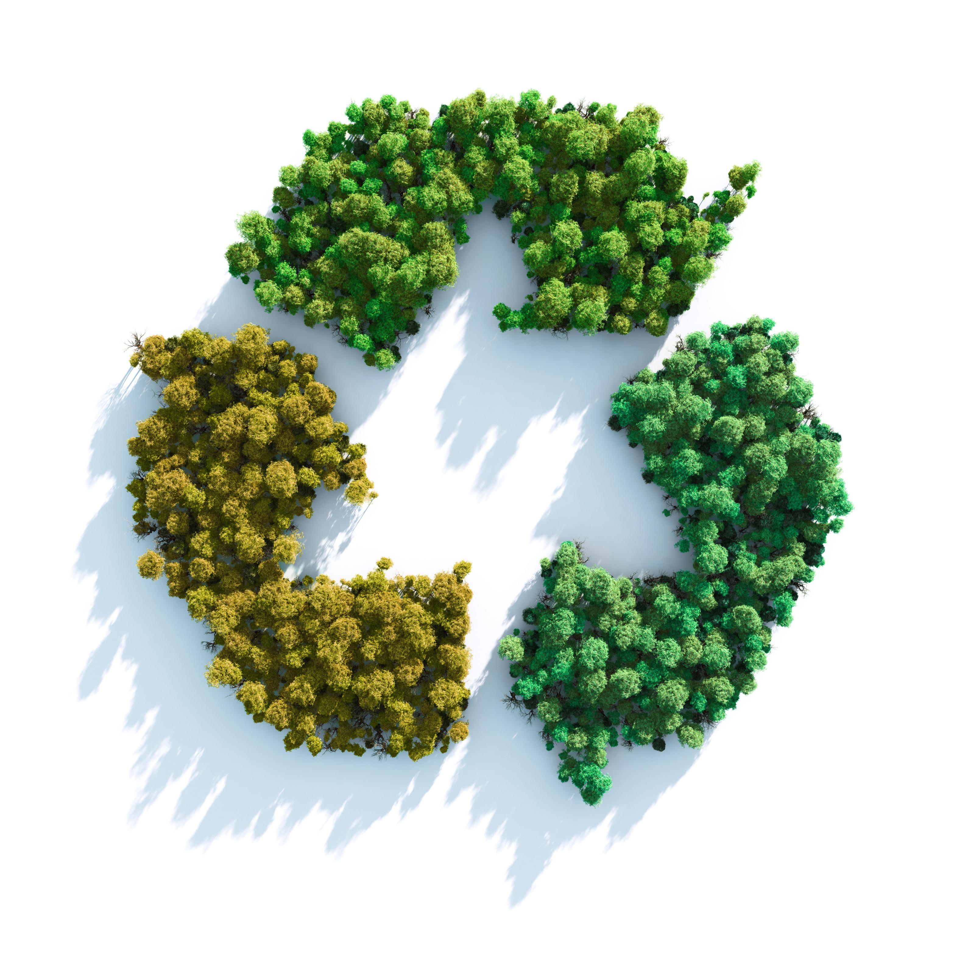 Contribución medio ambiental